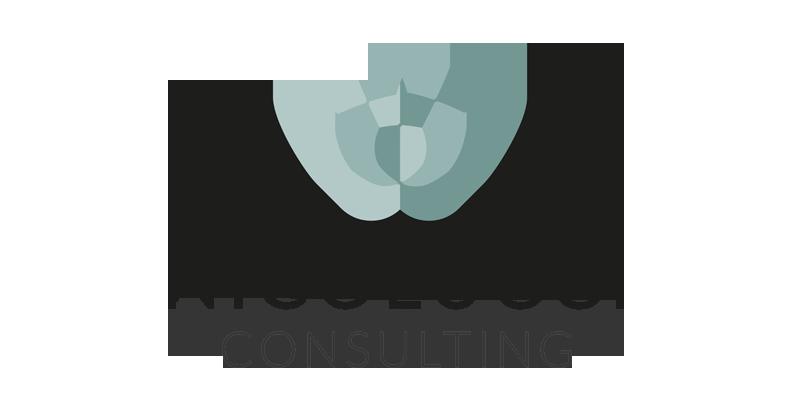 Nicolucci Consulting